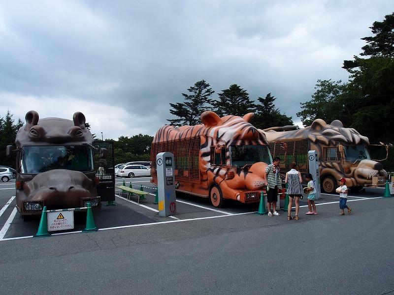 富士サファリパークのナイトサファリを体験してきました