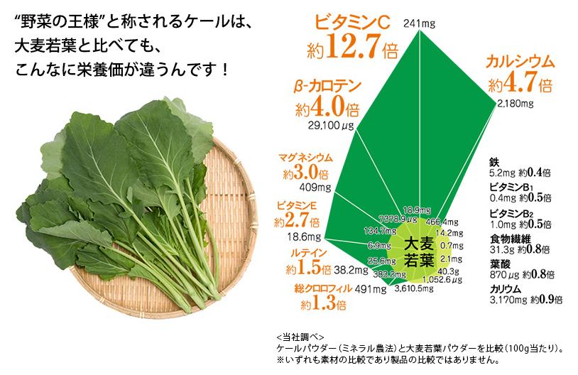 ケールと大麦若葉の栄養価比較