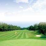 大分県内にあるゴルフショートコース・ミニコース一覧はこちら