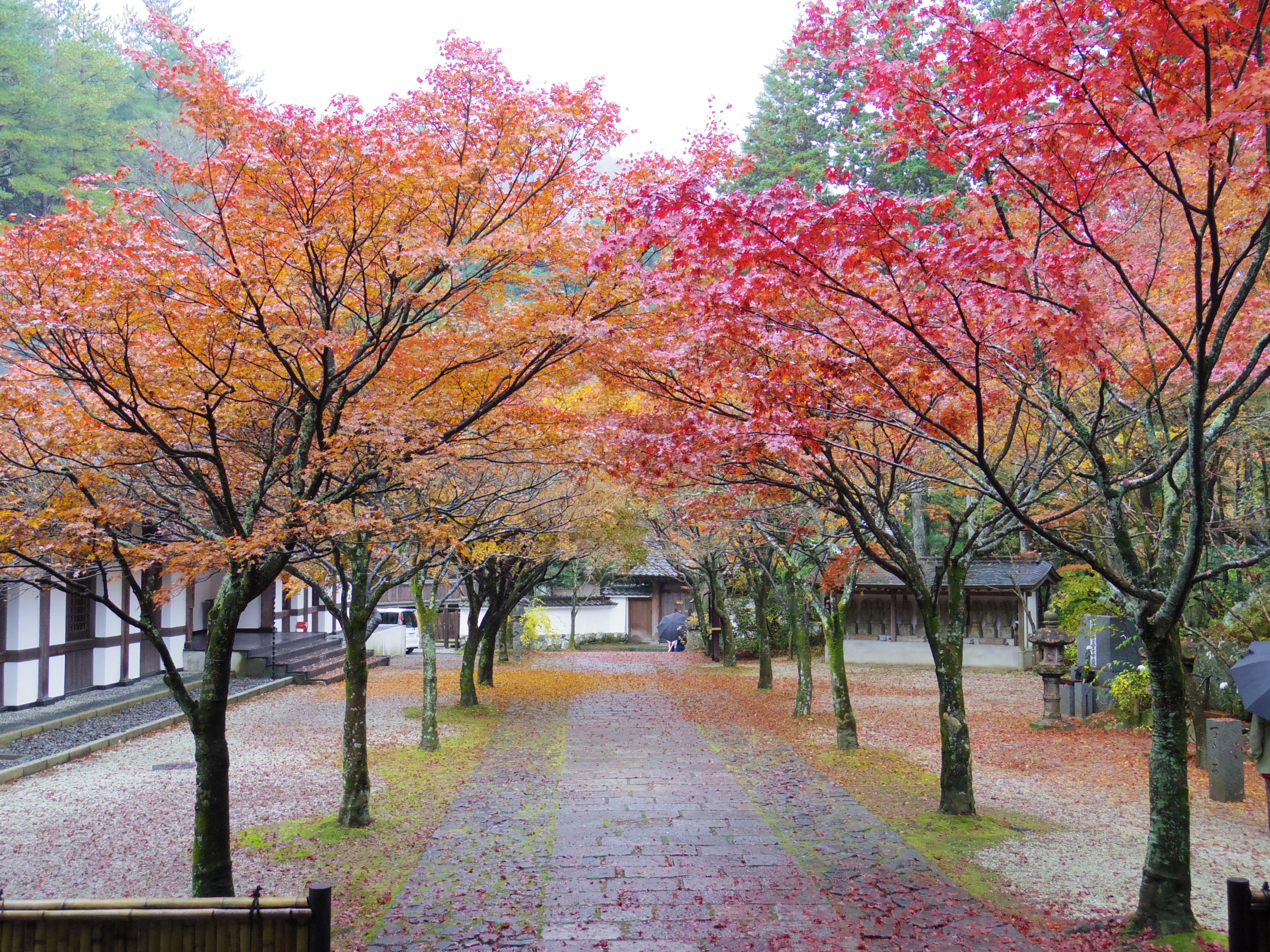 呑山観音寺