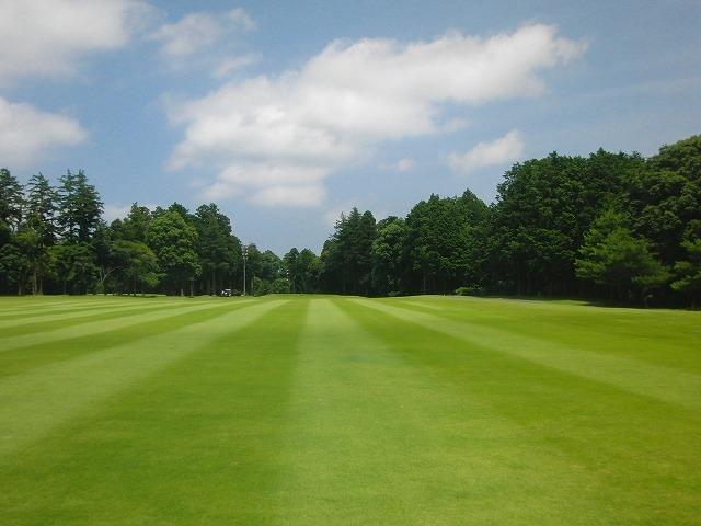 ゴルフ場のフェアウェイ