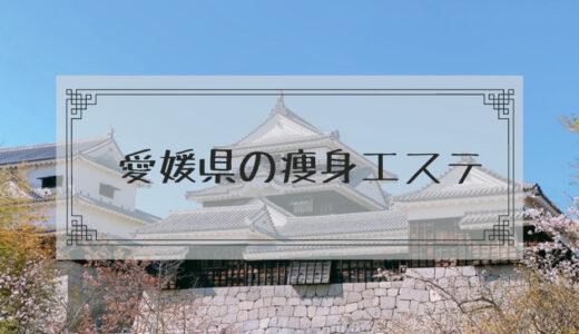 愛媛(松山)の痩身エステで体験ダイエットモニターコースがあるエステサロンまとめ