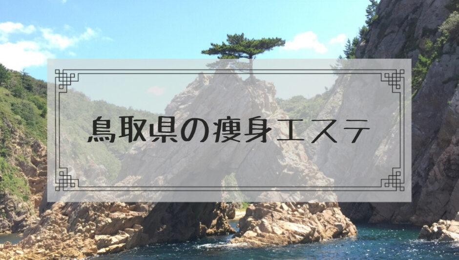 鳥取県の痩身エステ