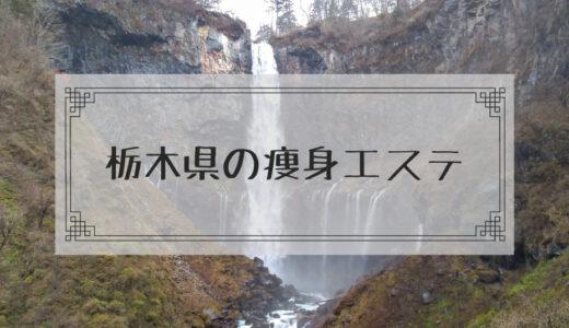栃木県(宇都宮)の痩身エステで体験ダイエットモニターを募集しているエステサロンまとめ