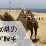鳥取県のヒゲ脱毛