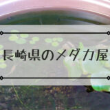 長崎県のメダカ屋
