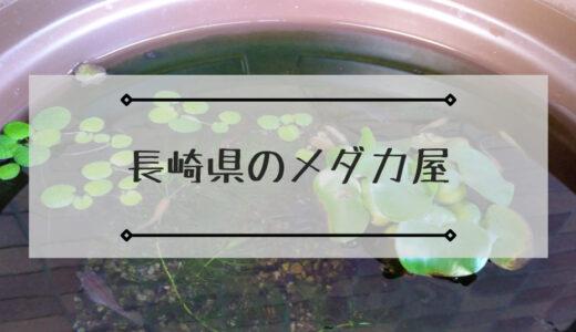 長崎県のメダカ屋で店頭・ネット販売しているメダカ屋まとめ