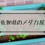 佐賀県のメダカ屋