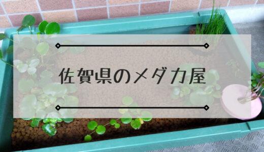 佐賀県のメダカ屋で店頭・ネット販売しているメダカショップまとめ